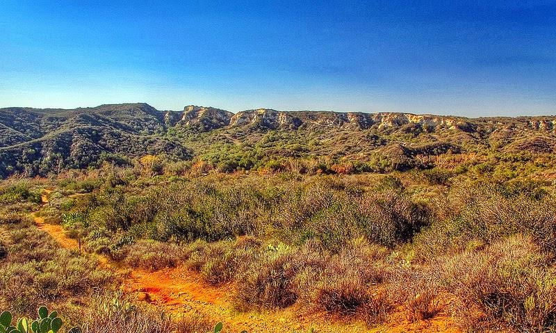 Orange County Winter Orange County California is