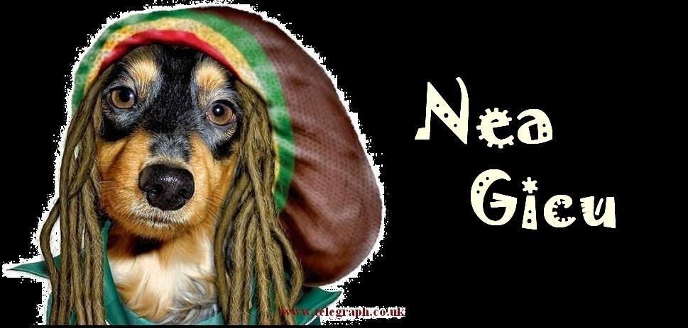 Nea Gicu