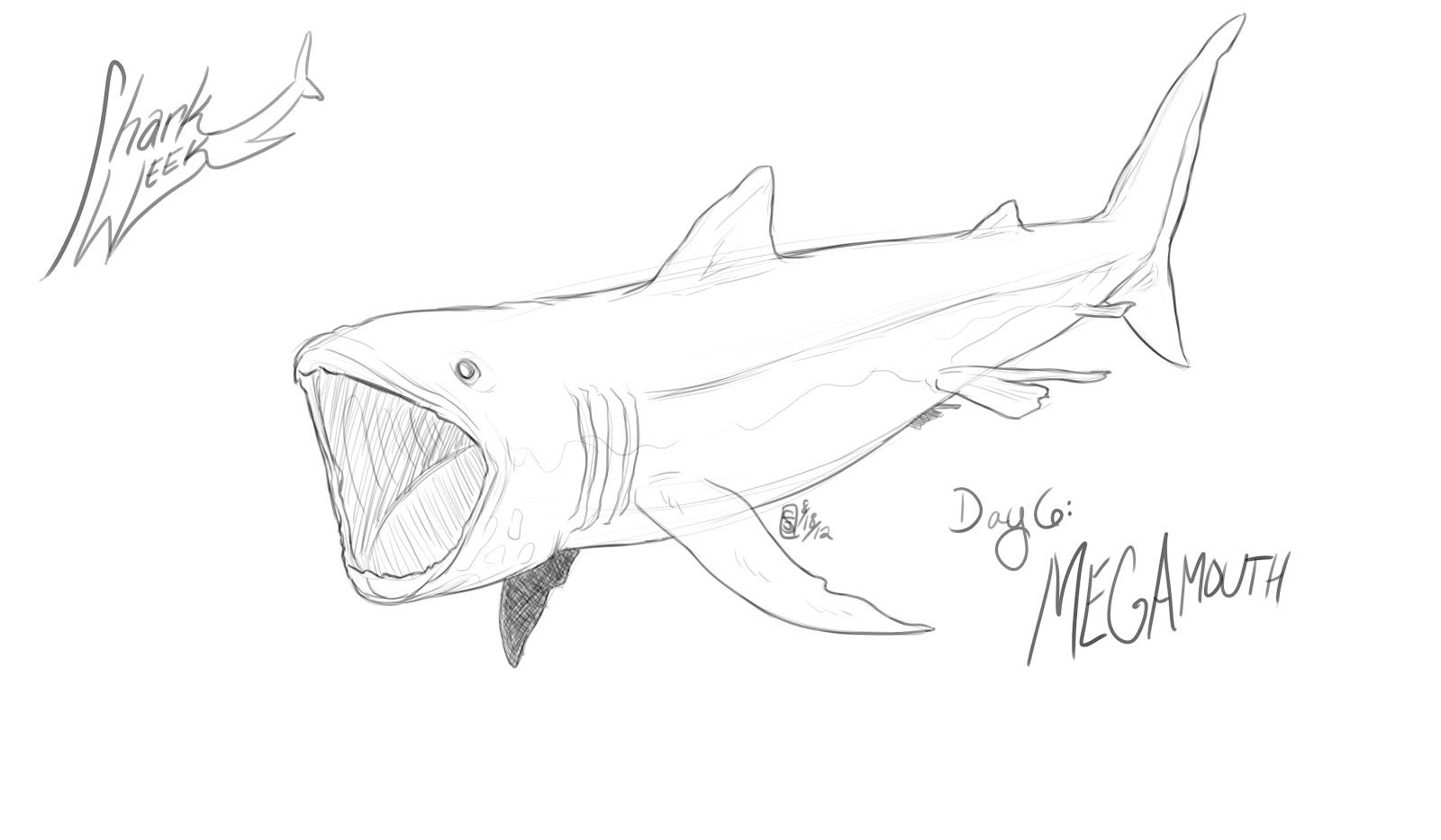 Free Coloring Pages Of Megamouth Shark Megalodon Shark Coloring Pages