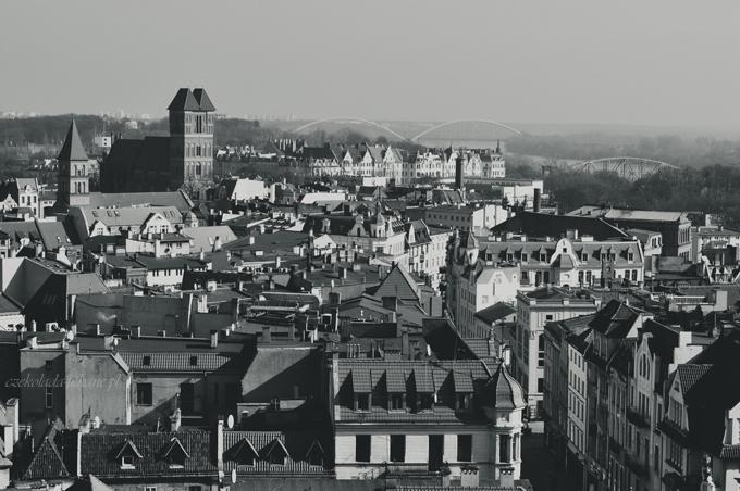 widok, na toruń, panorama