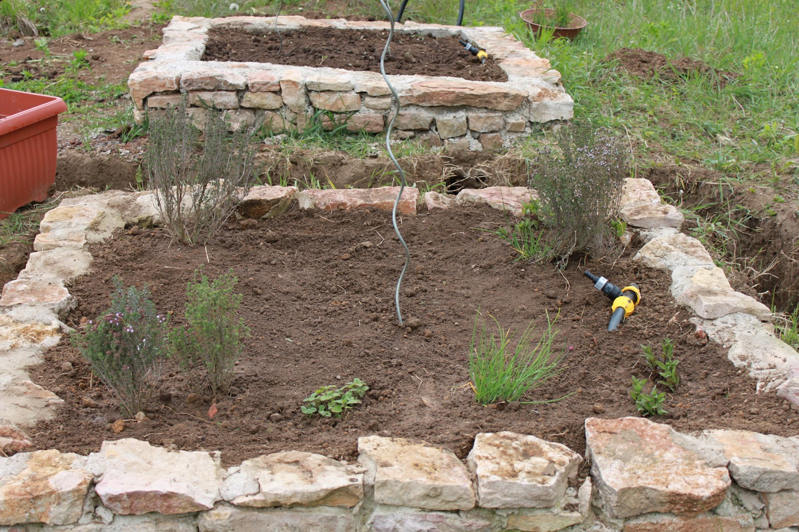 Le potager prend forme for Jardin au carre