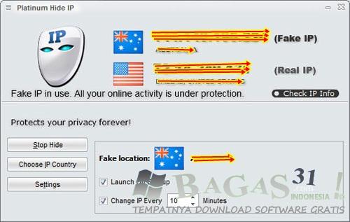 Platinum Hide IP 3.1.9.6 Full Crack - BAGAS31.com