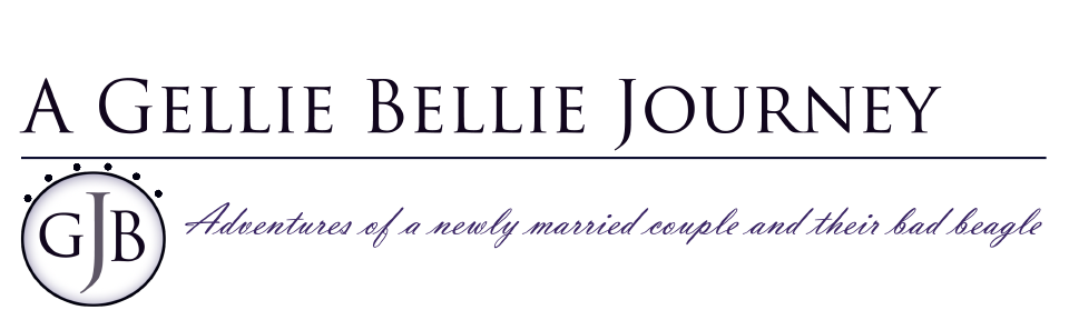 A Gellie Bellie Journey