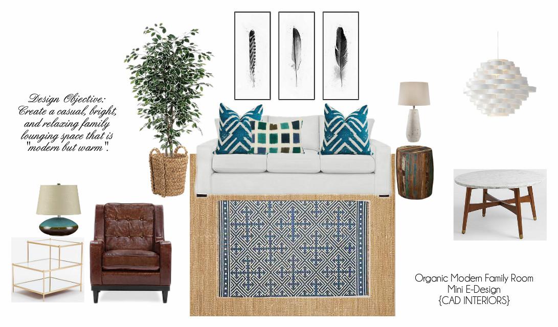 e-design interior design decorating rustic transitional contemporary west elm volo room and board pottery barn