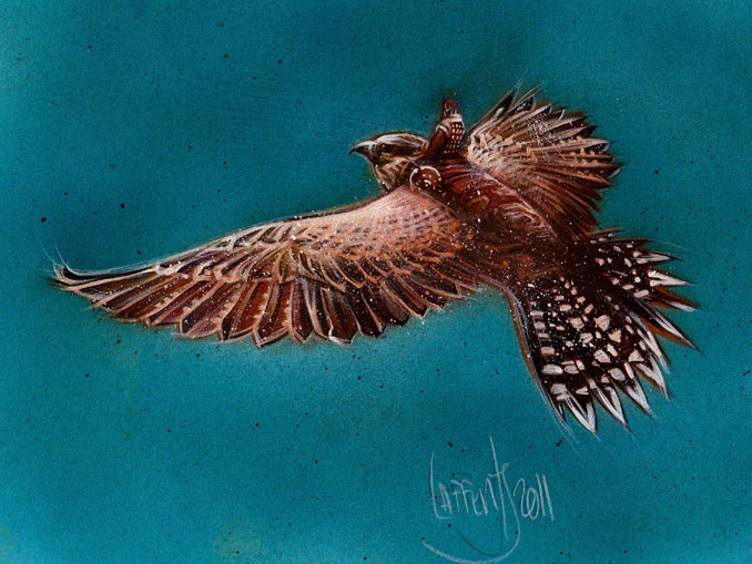 Hawk rider, original art by Jeff Lafferty