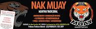 Muaythay