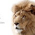 Top 10 Mac OS X Lion Wallpapers for Free Download
