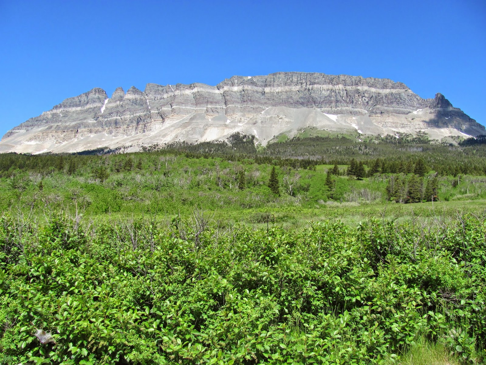 Two Dog Flats are a grassland area in Glacier National Park in Montana