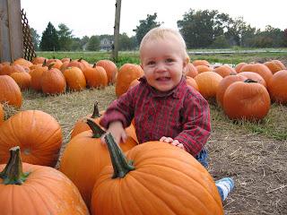 2014 Pumpkins, Mazes, Hayrides & More