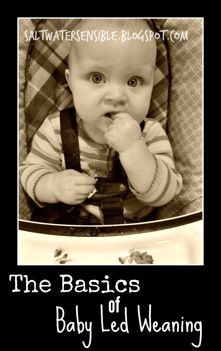 The Basics of Baby Led Weaning from a beginner