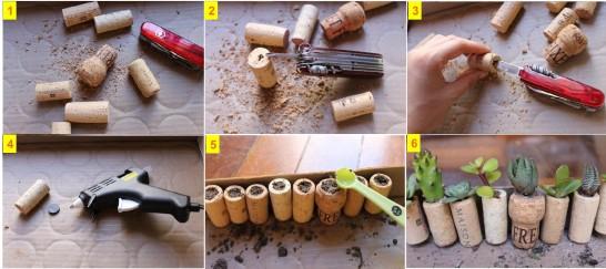 mini jardim de suculentas passo a passo:passo a passo como fazer um mini jardim