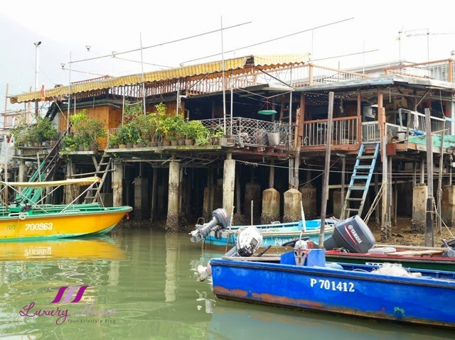 tai o sampan boat trips stilt houses waterway