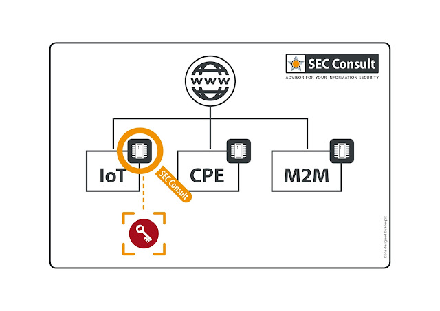 Focus of analysis by SEC Consult