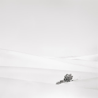 Death Valley Sand Dunes - Black and White Landscape Photograph