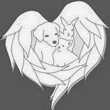 "Associazione ""Angels 4 Animals"" - Ticino"