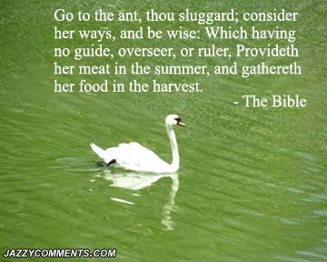 premier logo bible quotes