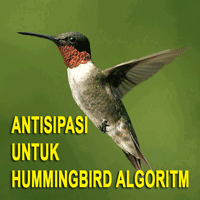 Antisipasi Hummingbird Algoritma