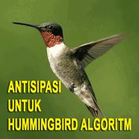 Beberapa Faktor Untuk Antisipasi Hummingbird Algoritma