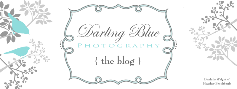 { darling blue photography }