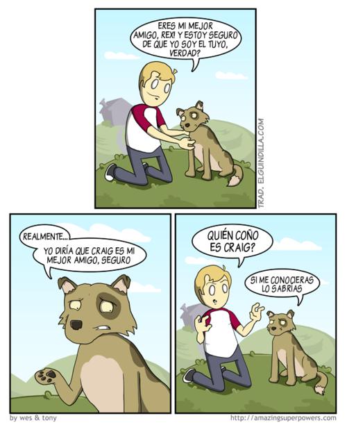 imagen graciosa - ¿Es el perro el mejor amigo del hombre?