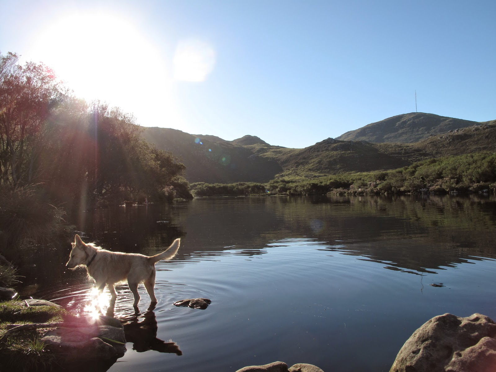 Silvermine Nature Reserve, Cape Town - Photo by Keri Muller