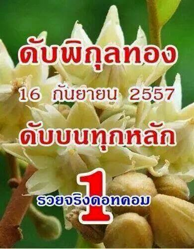Thai lottery Cut Digit 16-09-2014