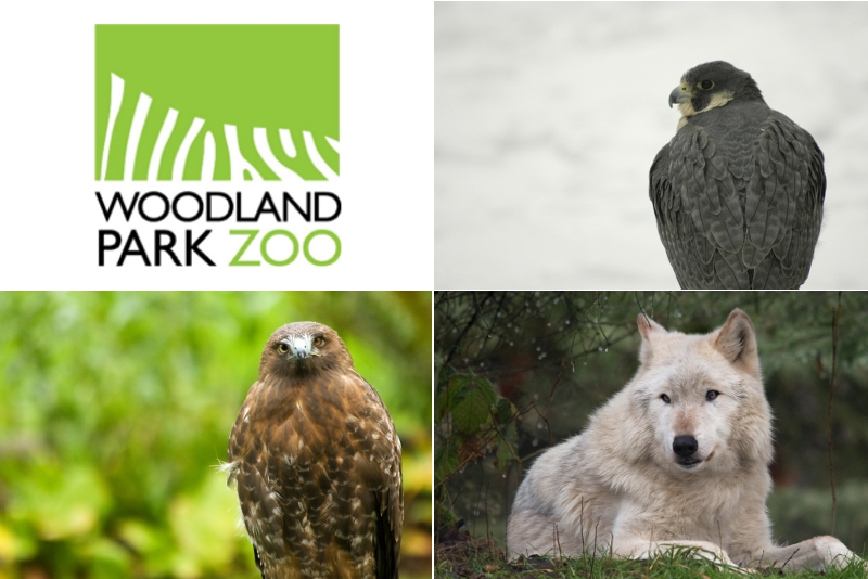 Woodland Park Zoo Blog: Attention all college students...