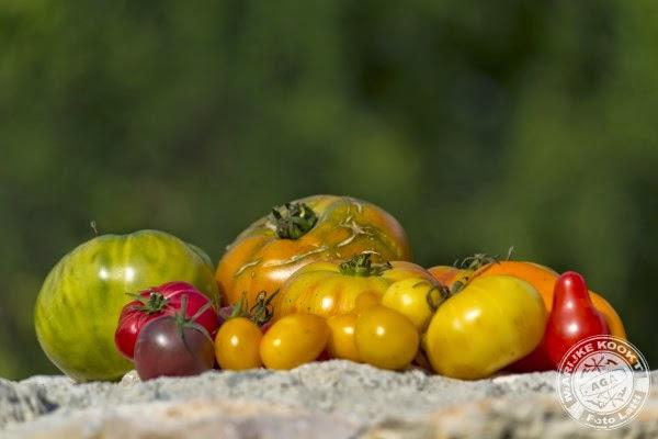Mange des tomates, mon amour