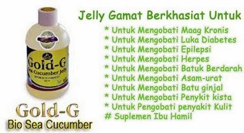 Manfaat dan Khasiat Jelly Gamat Gold G