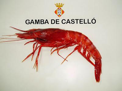 GAMBA DE CASTELLÓN