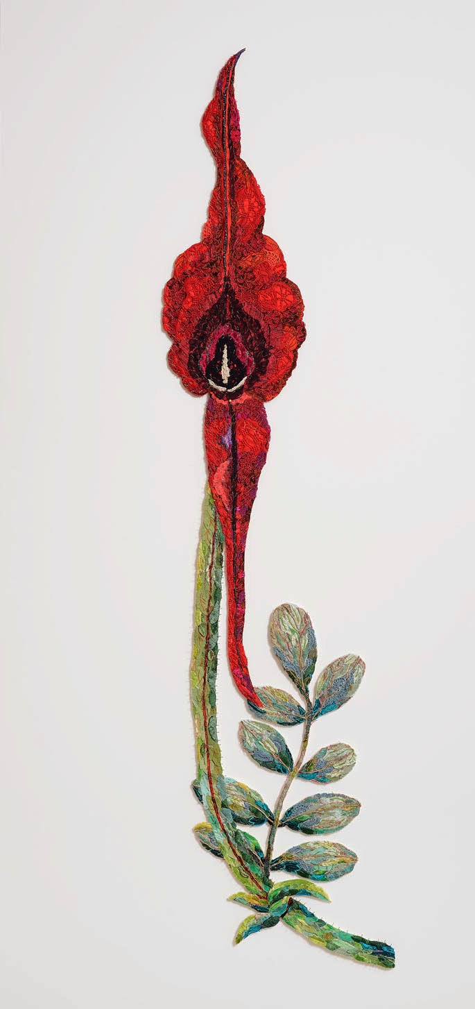 Lou saxton artspace mariannes clianthus headed for alice springs be a wonderful opportunity to visit a place where this glory flower clianthus formosus grows in abundance unfortunately not at this time of year mightylinksfo