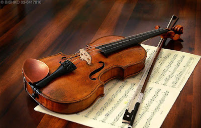 Violin classes in nagpur