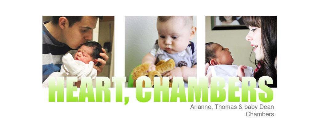 Heart, Chambers