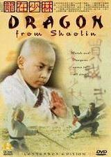 The Dragon From Shaolin