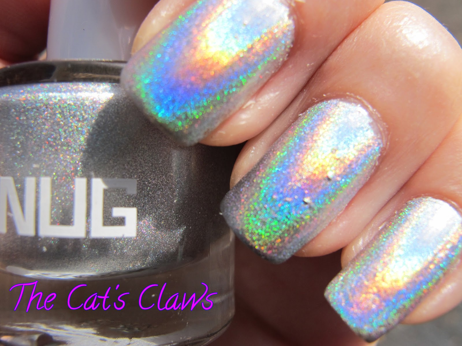 The Cat\'s Claws: Hola Holographic Nails!