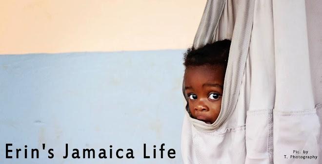 Erin's Jamaica Life