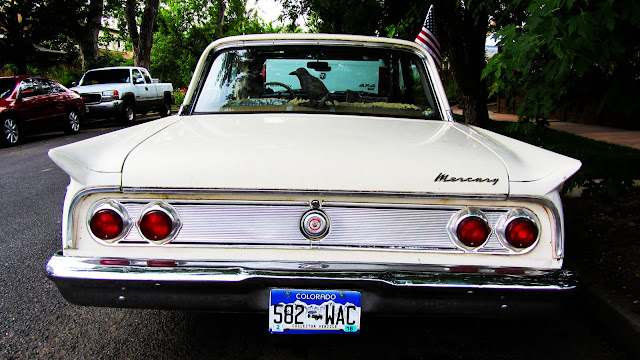 A 1962 classic Mercury with a stuffed raven perched in the back window.