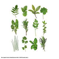 http://store.scrapgirls.com/bon-appetit-embellishment-mini-herbs-p16644.php