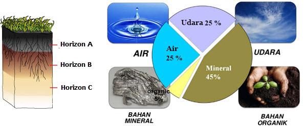 Proses Pembentukan Tanah dan Komponen Penyusun Tanah ...
