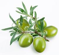 Beurre végétal d'olive