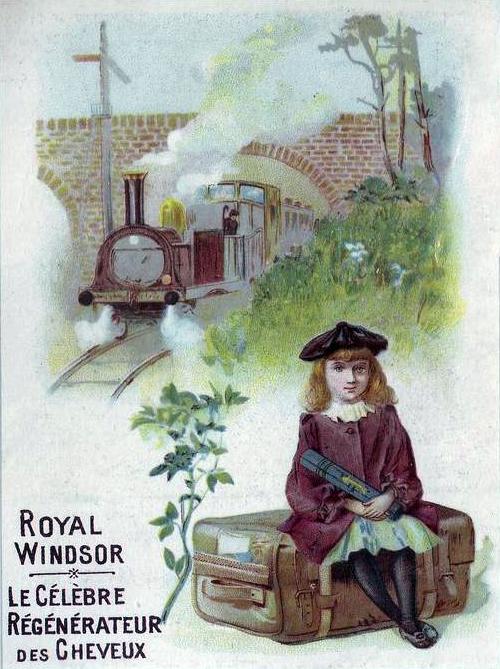 Transpress Nz Royal Windsor The Celebrated Regenerator