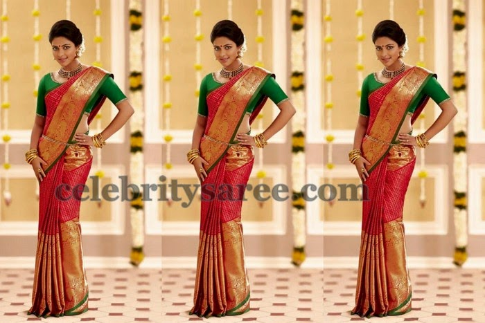 Amala Paul Big Border Kanchi Saree