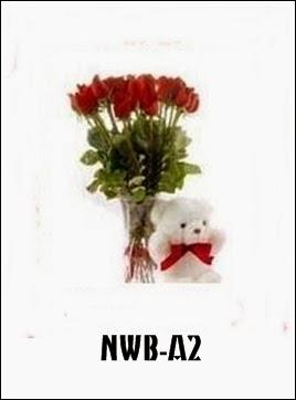 NWB-A2