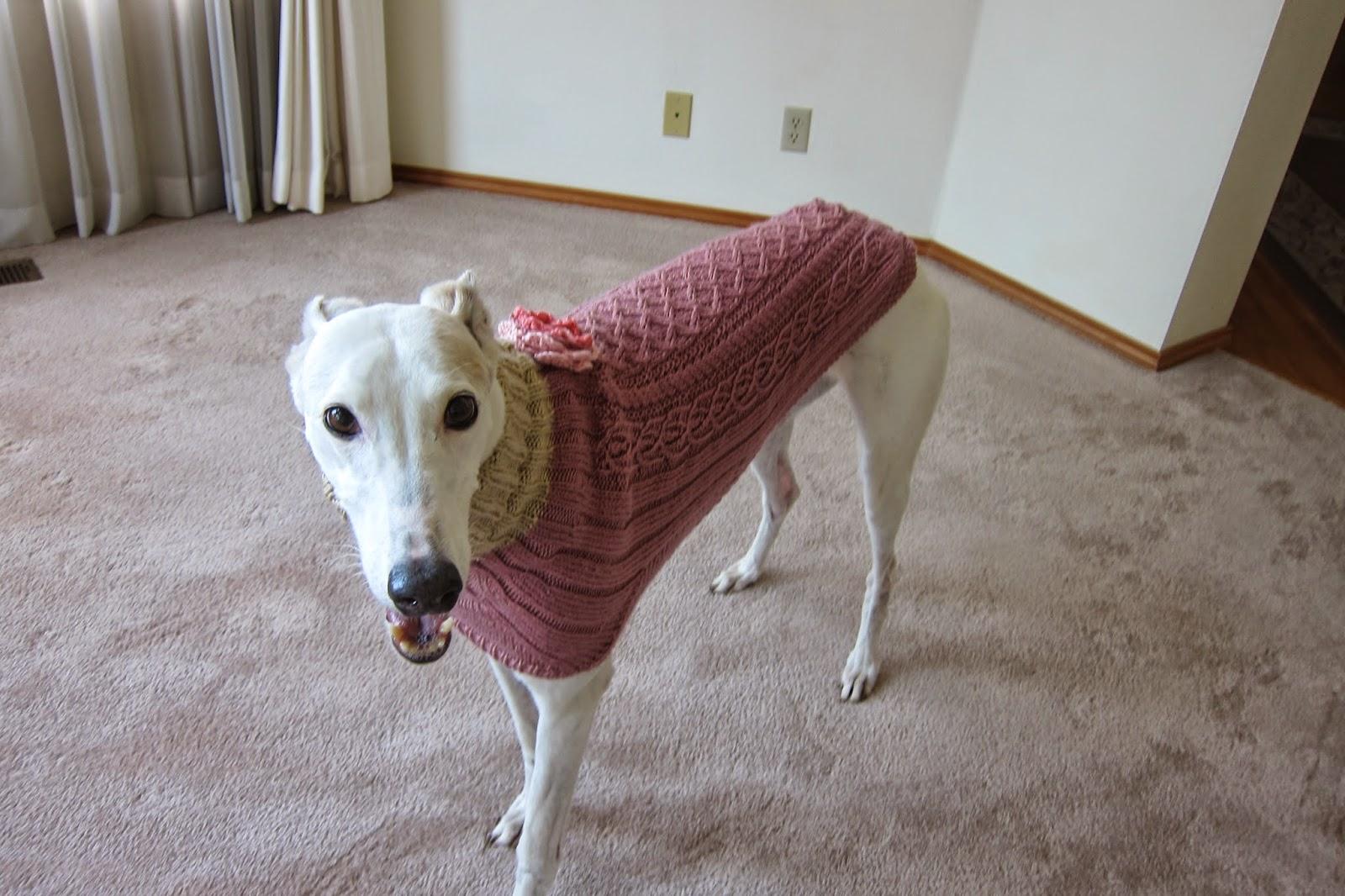 Greyhound Knit Sweaters Donation sweater