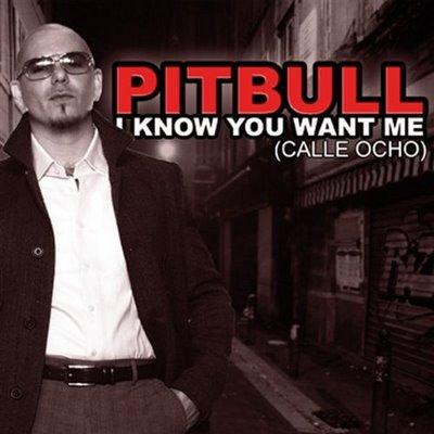 Hey Baby ( Drop It To The Floor )   Pitbull Ft. T Pain Por Sorocitytv No  Videolog.tv.