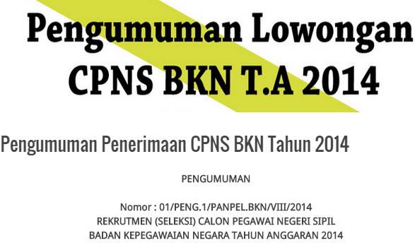 Pengumuman Hasil Seleksi CPNS BKN 2014