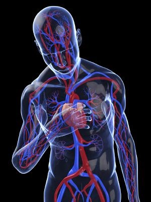 BieneSAludAlgoM ¿Qué puedo hacer para evitar un infarto de miocardio o un accidente vascular cerebral?