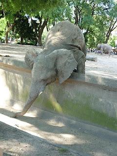 зоопарк Буенос Айрес