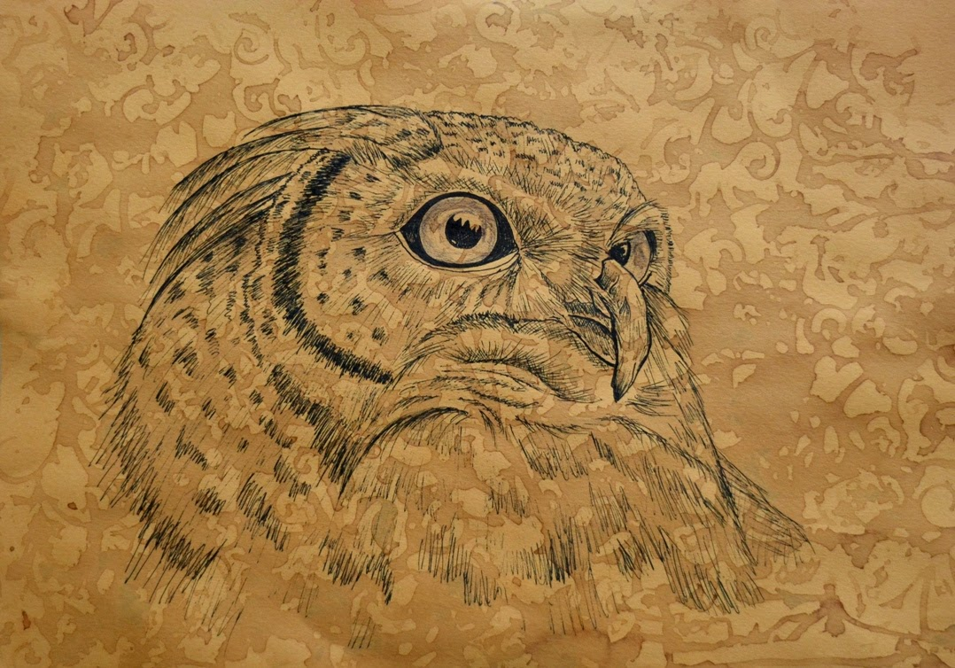 ink-drawing-owl-illustration-sketch-homedecor