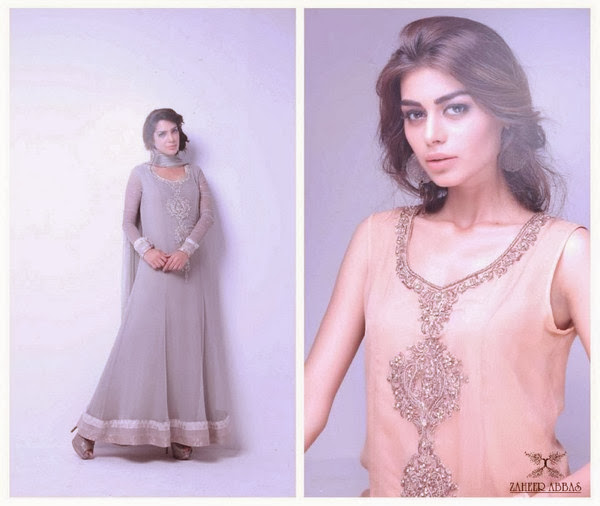 Formal Wear And Party Wear Dresses Collection 2013-14 For Women And Girls By Zaheer Abbas